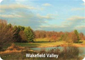 Wakefield Valley